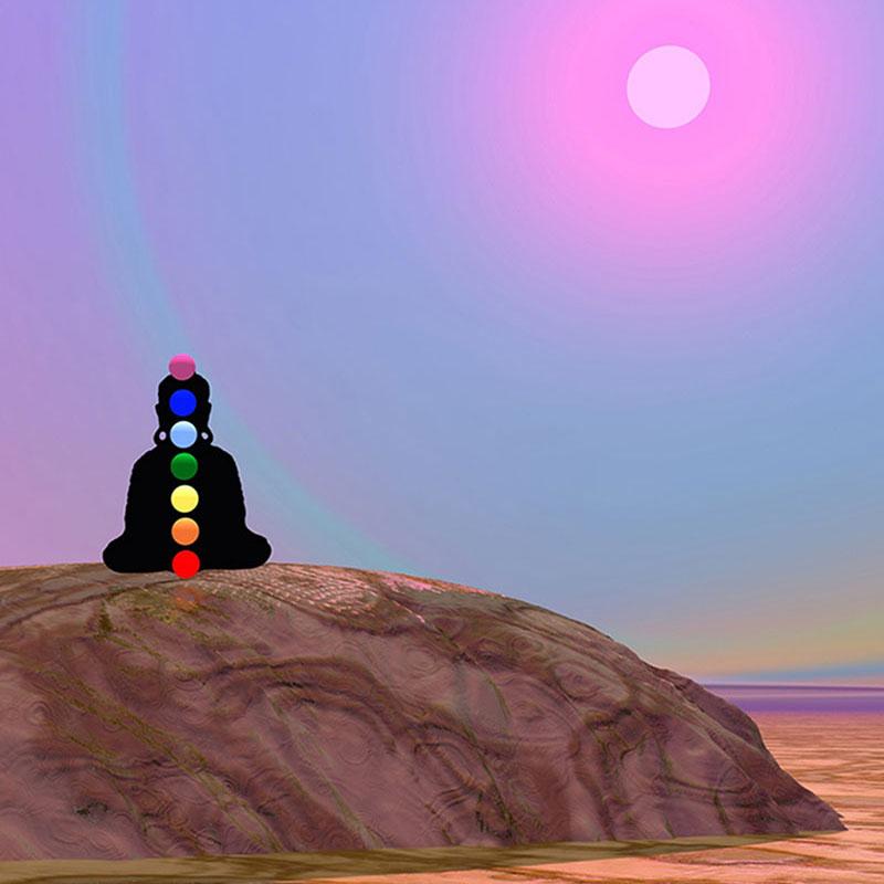 Meditation for Daily Living Mini Retreat #3