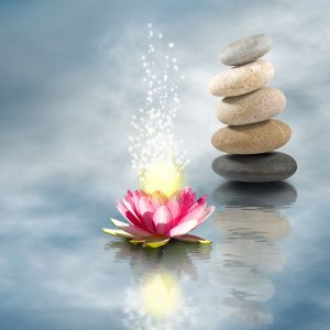 Meditation for Daily Living Mini Retreat 3 Part Series